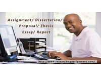Assignment / Essay / Dissertation / Thesis / Proposals Writing Help / Expert Writers / PhD