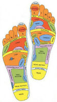 New Reflexologist on Staff
