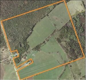 Build Your Dream Home! Approx. 55 Workable Acres!