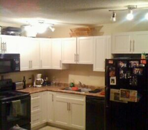 One bedroom downtown condo for rent