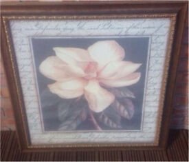 White Flower Picture in an antique gold frame