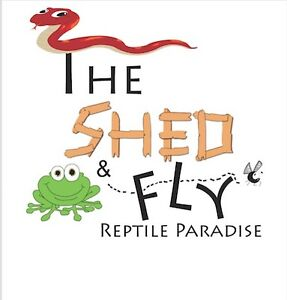 Fundraiser for the Shed and Fly Reptile Rescue!