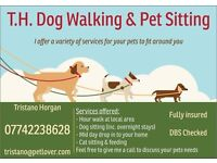 Dog Walking & Pet Sitting East Herts