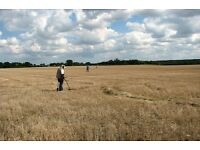FREE WEBSITE DESIGN TO FARMERS IN KENT IN EXCHANGE FOR PERMISSION TO METAL DETECT ON YOUR LAND.