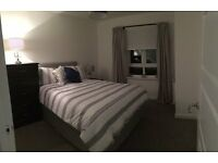 Double Bedrrom for Rent in Motherwell