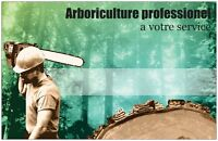 service darbre/tree cutting. taille de haie/hedge trimming