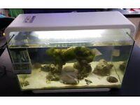 Marine Aquirium Fish Tank made by Superfish
