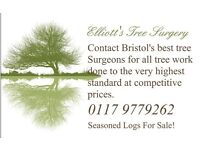 Elliotts Tree Surgery, Bristol BS4 TREE SURGEONS