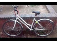 Woman bike