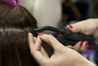 hair extension certification 1 Day class