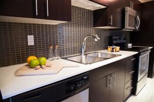 LARGE 2 BDRM APARTMENT FOR RENT. NEWLY RENOVATED/NEW APPLIANCES