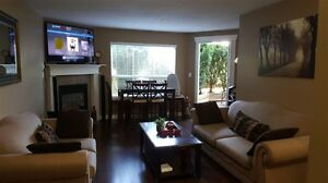 Renovated and Well Maintained Ground Floor Apt. Unit