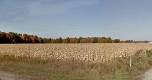 St-Nicéphore,terre agricole à vendre avec terre à bois,354arp