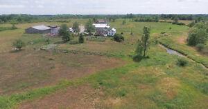 170 ACRES FARM IN FLAMBOROUGH ( MARIHUANA PERMITTED) Cambridge Kitchener Area image 5