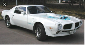 WANTED: Trans Am