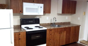 154 King St E Apt #1 - Close to Downtown, Hospitals and Queen's