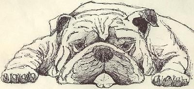 Bulldog Comics