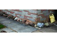 Rocks for your Garden - 20