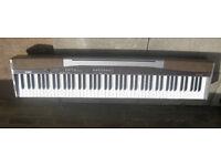 ~~~CASIO PRIVIA PX-100 DIGITAL PIANO~~~
