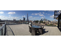 Large Room at London Bridge/Tower Bridge - Bermondsey Penthouse