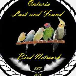 Lost and Found Bird Network