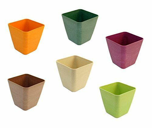 Set of 6 Tapered Square Mini Planters Made of Bamboo Fiber
