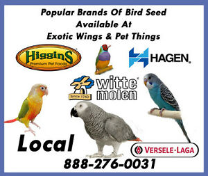 Local Seed For Birds Kitchener / Waterloo Kitchener Area image 2