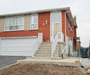Bovaird & Dixie - Two Bedroom Legal Walkout Basement Apartment