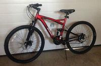 Schwinn mountain bike, new