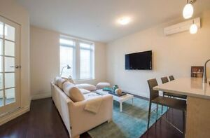 Fabulous STUDIO condo in Shaughnessy Village, DOWNTOWN for rent