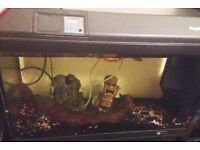 Tropiquarium 68 FISHTANK (70 litres) and accessories, gravel,logs,pump,filter etc VGCC £69 ovno