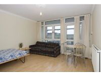 Spacious 1 Bedroom Flat With Large Balcony To Rent In Wapping. Close To Wapping Station