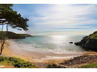 Beautiful Beachfront Flat in Caswell Bay