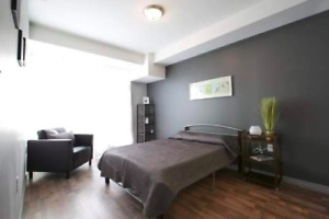 New Bedroom in Apartment for Rent (May-August)