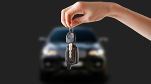 Affordable Auto Insurance / New Drivers Welcome / 905-484-2610