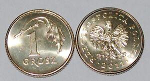 2011-Poland-1-Grosz-Brass-Coin-BU-Very-Nice-KM-276