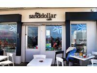 Sand Dollar Cafe & Bistro Barista/Waiting Staff