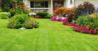Landscaping, Labour and Yard Maintenance 16-20/hr