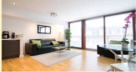Cleaner for serviced apartments (Glasgow)