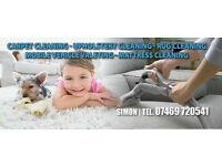 CARPET AND UPHOLSTERY CLEANING SERVICES / CARPET CLEANER