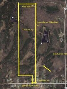 75 Acres of Land on Gravel Drive