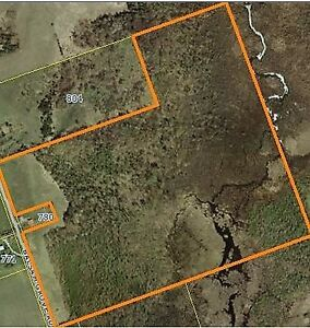 Here Is Your Chance To Own A Large Piece Of Land!