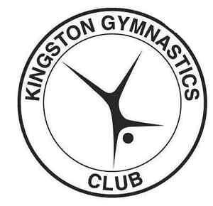Ninjastics at the Kingston Gymnastics Club Kingston Kingston Area image 1