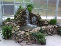 Pond, Aquariums, Garden design and maintenance for all.