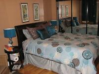 Large 5½+basement+yard+PARKING /Grand 5½ +sous-sol +cours+GARAGE
