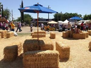 Gorgeous golden straw bales for your wedding / special event! Cambridge Kitchener Area image 9