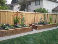 Professional and Hardworking Gardner will make your garden looks amazing!!!