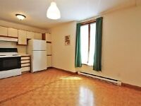 Bright & Large 2 bedroom apt in Plateau near Downtown/ McGill