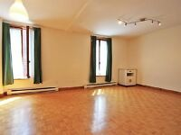 Nice 2 bed apt in the heart of city  near McGill/Plateau