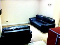 1 bedroom flat (close to town center)